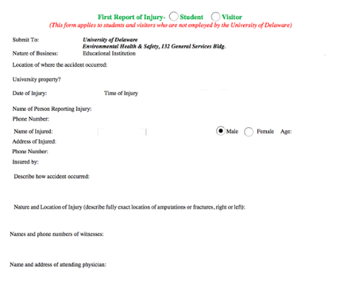 First Report of Injury Form screenshot