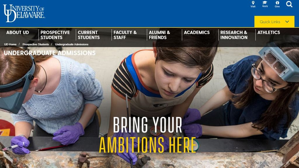 Undergraduate admissions screen capture